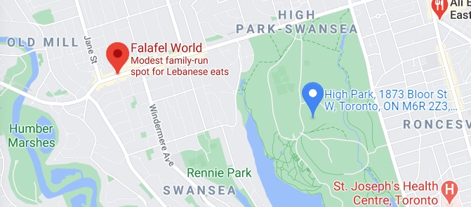 Falafel World